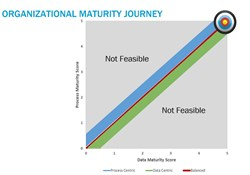 Achieving Data Maturity: An Organizational Balancing Act