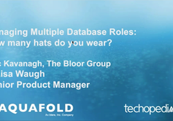 Managing Multiple Database Roles: How Many Hats Do You Wear?
