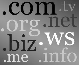 Domain Name Registrars: An Essential Cog in the Website Industry
