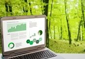 Enterprise Data Strategy - A Walk in the Woods Versus a Journey to the Top