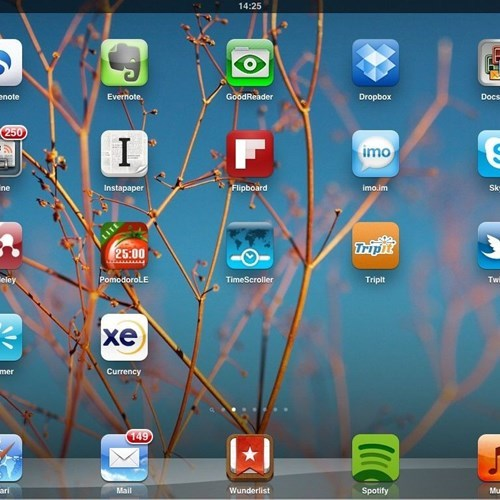 Company Apps: The Next Frontier of Office Software?
