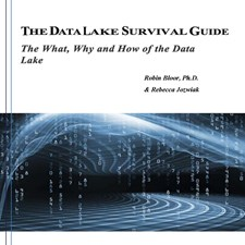 The Data Lake Survival Guide: The What, Why and How of the Data Lake