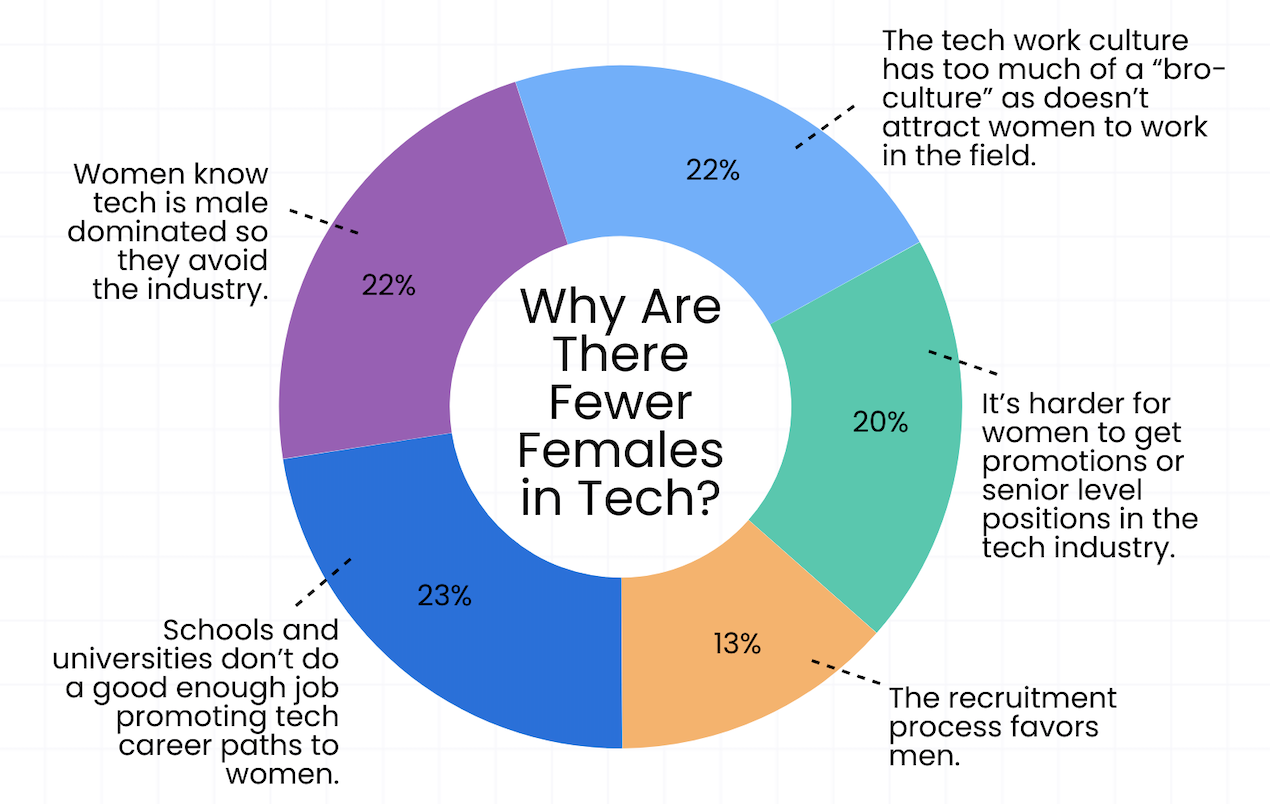 Infographic showing why there are fewer females then men in tech