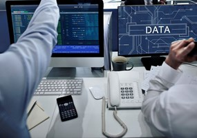 The Role of Citizen Data Scientists in the Big Data World