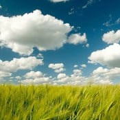 Cloud Evolution: How We See and Use the Cloud Has Changed