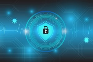 Information Security: Understanding and Securing the New Perimeter