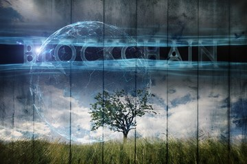 Is Blockchain Good or Bad for the Environment?
