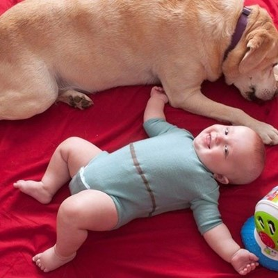 baby and dog lying on red blanket