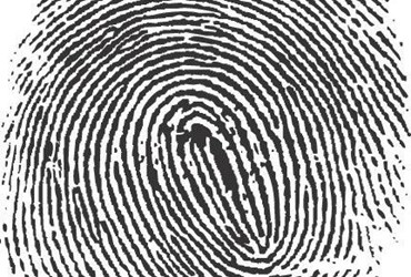 What is Biometric Data? - Definition from Techopedia